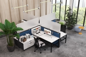 Cubicle with Frosted Acrylic Screens